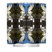 Path Of Flowers 1 Shower Curtain
