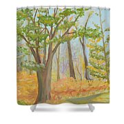 Path Of Trees Shower Curtain