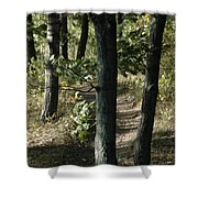 Path Out Shower Curtain