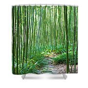 Path Through Bamboo Forest Shower Curtain