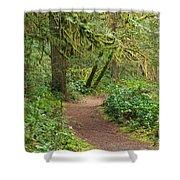 Path Through The Rainforest Shower Curtain