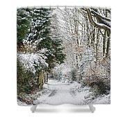 Path Through The Snow Shower Curtain