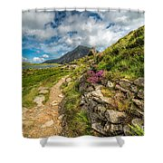 Path To Lake Idwal Shower Curtain by Adrian Evans