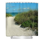 Path To Pass -a- Grille Shower Curtain