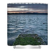 Path To The Bay Shower Curtain