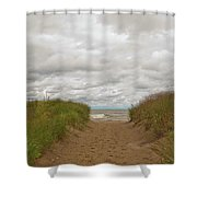 Path To The Beach 12058 Shower Curtain
