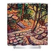 Path To The Cascades Shower Curtain