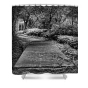 Path To The Forest Shower Curtain