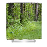 Path To The Green Forest Shower Curtain