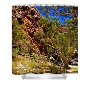 Path To The Gum Trees And Waterhole Shower Curtain