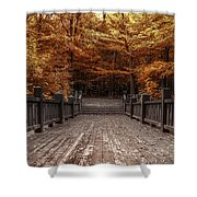Path To The Wild Wood Shower Curtain by Scott Norris