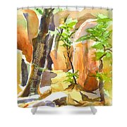 Pathway II Shower Curtain