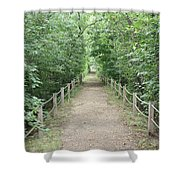 Pathway Through The Forest Shower Curtain