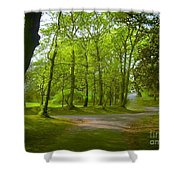 Pathway Through The Trees Shower Curtain