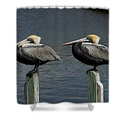 Patient Pair Shower Curtain