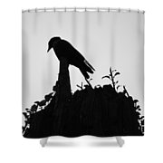 Patient Worm Shower Curtain