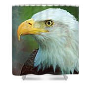 Patriot Shower Curtain by Heidi Smith
