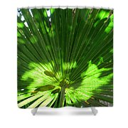 Green Plant Pattern Shower Curtain