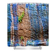 Pattern On Wet Canyon Wall From River Walk In Zion Canyon In Zion National Park-utah  Shower Curtain