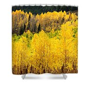 Patterns Aglow Shower Curtain