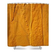 Patterns And Animal Tracks On Sand Shower Curtain