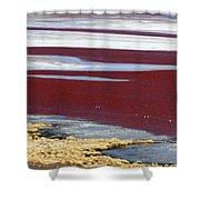 Patterns At Laguna Colorada Shower Curtain