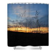 Patterson Hay  Shower Curtain