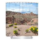 Pawnee Buttes Colorado Shower Curtain