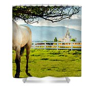 Payson Country Temple Oil Paint Texture Shower Curtain