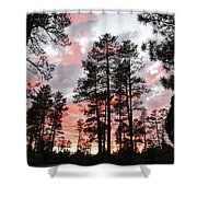 Payson Pines Sunset Shower Curtain