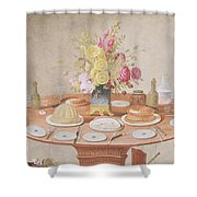 Pd.869-1973 Still Life With A Vase Shower Curtain