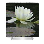 Peace And Enlightment Shower Curtain