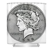 Graphite Peace Dollar Shower Curtain