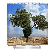 Peace Tree Shower Curtain