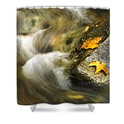 Peaceful Creek Shower Curtain