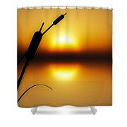 Peaceful Dawn Shower Curtain