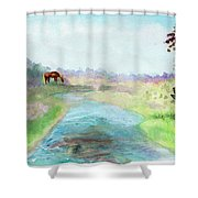 Peaceful Day Shower Curtain
