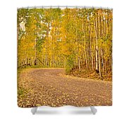 Peaceful Drive Shower Curtain