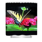 Peaceful Essence Shower Curtain