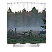 Peaceful Farm Scene Shower Curtain