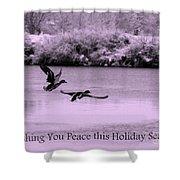 Peaceful Holidays Card - Winter Ducks Shower Curtain