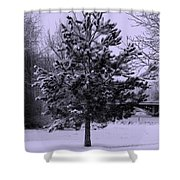 Peaceful Holidays Shower Curtain by Carol Groenen