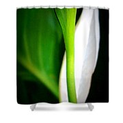 Peaceful Lily Shower Curtain