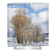 Peaceful Moments II Shower Curtain