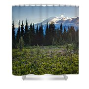 Peaceful Mountain Flowers Shower Curtain