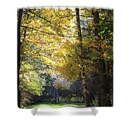Peaceful Path Shower Curtain by Kathy DesJardins