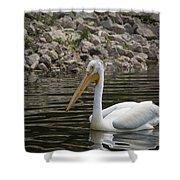Peaceful Pelican Shower Curtain