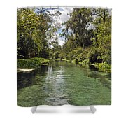 Peaceful Spring Shower Curtain