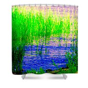 Peaceful Stream  Quebec Landscape Art Tall Grasses At The Lakeshore Waterscene Carole Spandau Shower Curtain