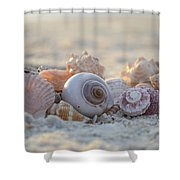 Peaceful Whispers Shower Curtain